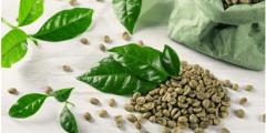 القهوة الخضراء والتخسيس