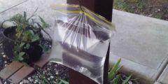 التخلص من ذباب المنزل باستخدام أكياس النايلون المملوءة بالماء