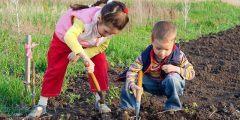 البستنة العلاجية: كيفية مساعدة الأطفال للتغلب على المشاكل الإجتماعية والصعوبات في المهارات الحركية