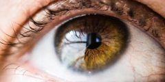 قرنية العين ومشاكلها
