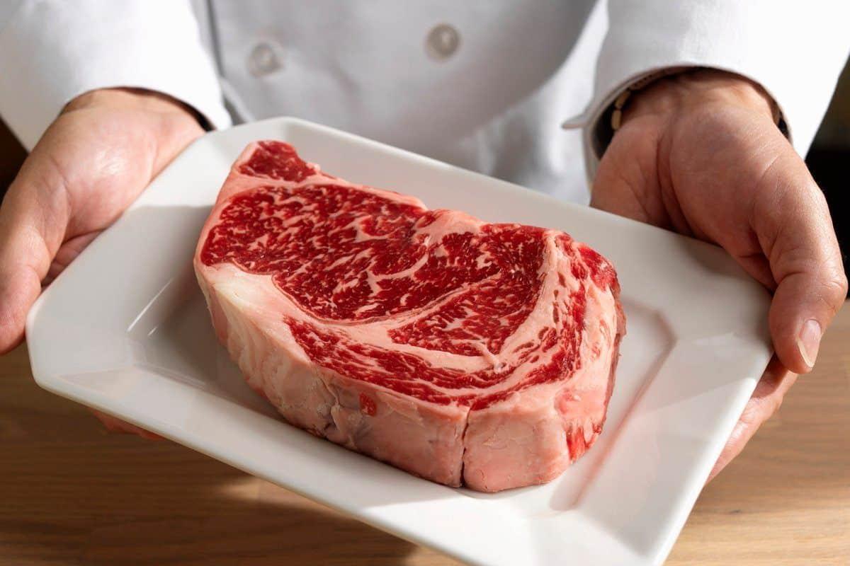 هضم اللحوم في المعدة