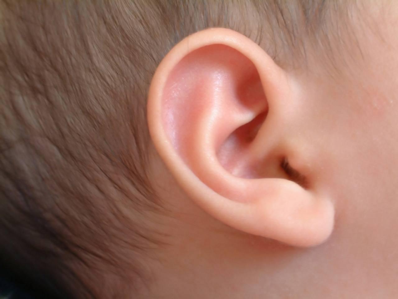أفضل قطرة التهاب الأذن