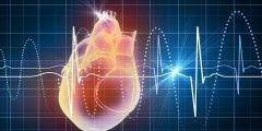 هل تسارع دقات القلب خطير